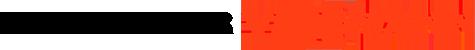 Partener Viessmann Logo